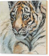 Tiger Cub Portrait 865 Wood Print