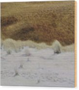 Tiger Dune Wood Print