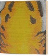 Tiger Eyes Wood Print