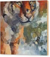 Tiger Hotty Totty Style Wood Print
