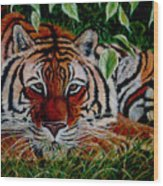 Tiger In Jungle Wood Print