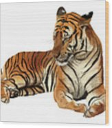 Tiger In Repose Wood Print