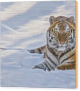 Tiger In The Snow Wood Print
