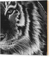 Amur Wood Print