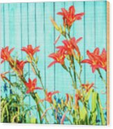 Tiger Lily And Rustic Blue Wood Wood Print