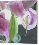 Tiger Lily Bud Wood Print