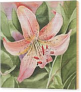 Tiger Lily Watercolor By Irina Sztukowski Wood Print