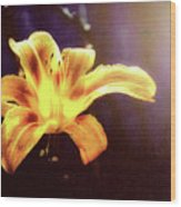 Tiger Lily On Waters Edge Wood Print