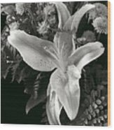 Tiger Lily Orchid  2 Wood Print