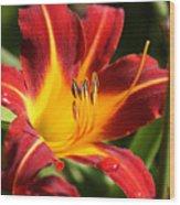 Tiger Lily0170 Wood Print