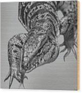 Tiger Lizard Wood Print
