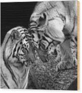 Tiger Love Wood Print