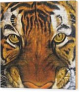 Tiger Mask  Original Oil Painting Wood Print