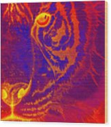 Tiger On Fire Wood Print