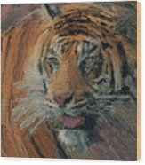 Tiger On Hunting Wood Print