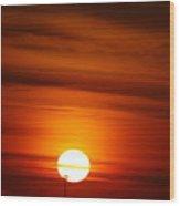 Tiger Sunset Wood Print