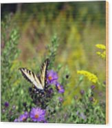 Tiger Swallowtail And Bee Wood Print