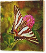 Zebra Swallowtail Butterfly - Digital Paint 3 Wood Print