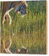 Tiger Tiger Burning Bright Wood Print by Melody Watson