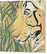 Tiger Traveler - Www.jennifer-d-art.com Wood Print