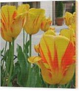 Tiger Tulips Wood Print