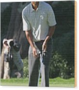 Tiger Woods P Wood Print