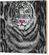 Tigerflouge Wood Print