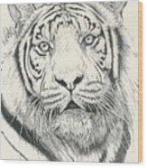 Tigerlily Wood Print