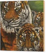 Tigers Family Oil Painting Wood Print