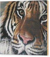 Tigger Wood Print