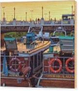 Tigre Delta 017 Wood Print