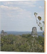 Tikal IIi Wood Print