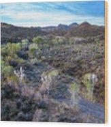 Tilt-shift Desert Wash Wood Print