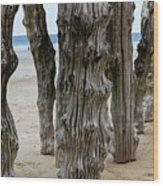 Timber Textures Lv Wood Print