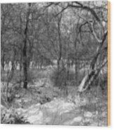 Timberland Infrared No3 Wood Print