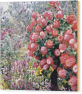 Timberland Wood Print