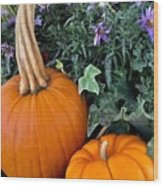 Time For Pumpkins In The Flower Beds Wood Print