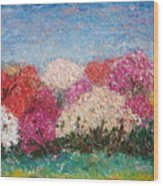 Time Of Rhododendron Wood Print