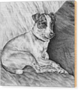 Time Out - Jack Russell Dog Print Wood Print by Kelli Swan