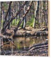Time Stood Still Wood Print
