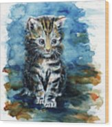 Timid Kitten Wood Print