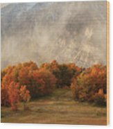 Timpanogos Veiled Wood Print