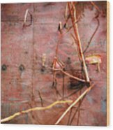Tin Door - Red Pond Wood Print