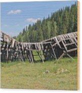 Tincup History 3 Wood Print