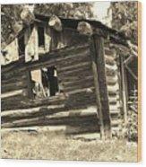 Tincup History Wood Print