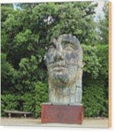 Tindaro Screpolato Sculpture In Boboli Garden 0197 Wood Print