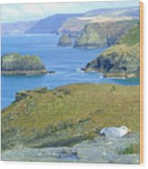 Tintagel Wood Print