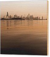 Tinted Chicago Skyline Wood Print