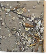 Tiny Crab Shells Wood Print