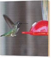 Tiny Flying Machine Wood Print